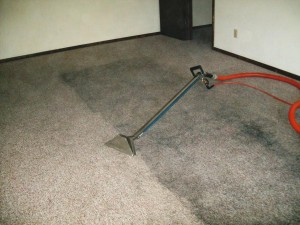 Steam Team Carpet Cleaning Pricing